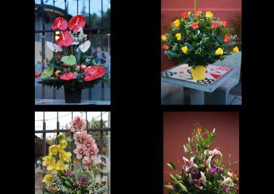 Floristería Cafe Casa Florida Manizales - Flores Florida